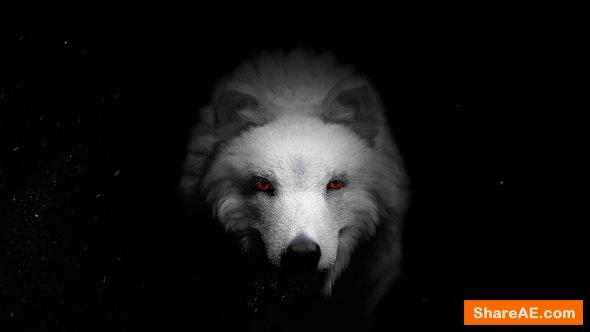 Videohive Wolf & Dragon