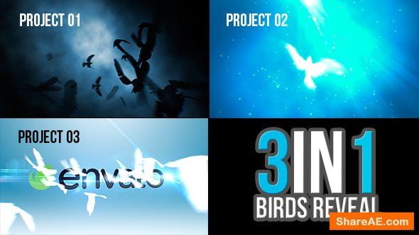 Videohive 3 in 1 Birds Reveal