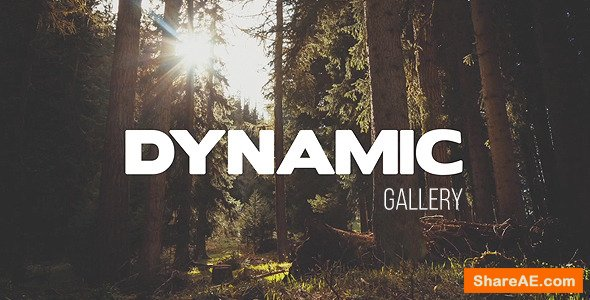 Videohive Dynamic Gallery