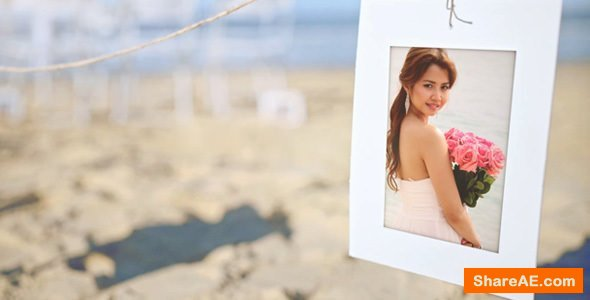 Videohive Beach Wedding Photo Gallery