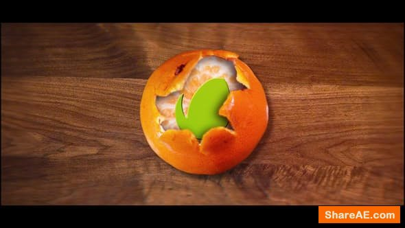 Videohive Tangerine Logo