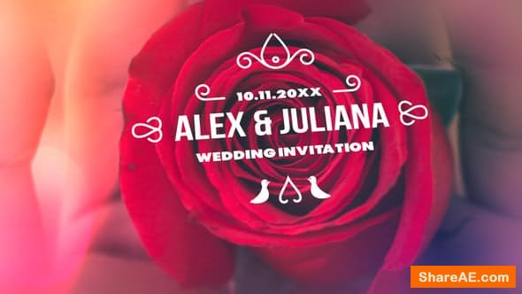 Videohive Minimal & Luxury Wedding Titles - PREMIERE PRO