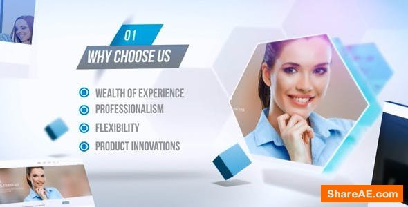 Videohive Website or Company Promotion