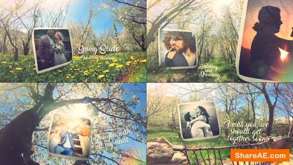 Videohive Spring Wedding Slide