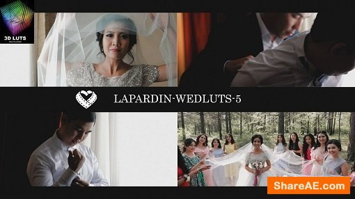 LAPARDIN WEDLUTS - Romantic Wedding LUTs for AE, PS, Premire, Resolve and FCP X and etc...