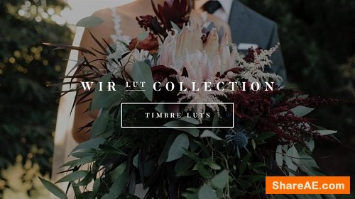 White In Revery – Timbre LUTs – Professional Color Grading LUTs