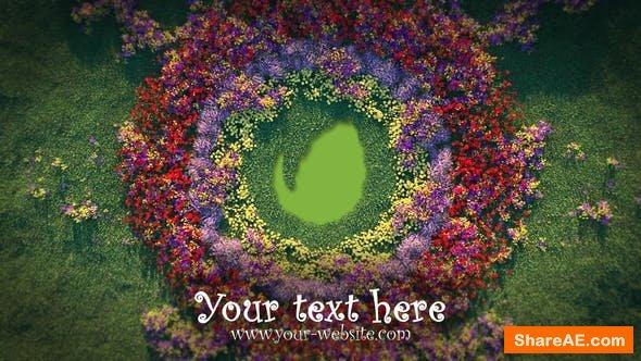 Videohive Growing Flowers Pattern Logo Opener
