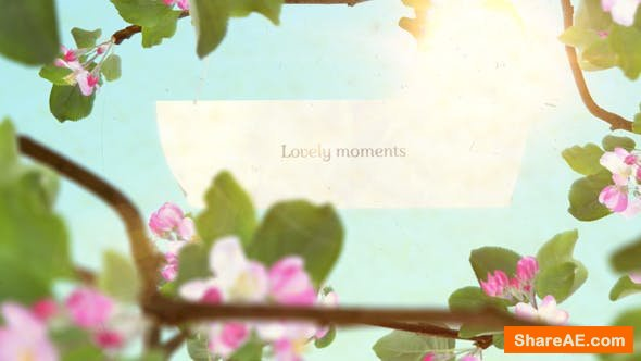 Videohive Lovely Moments