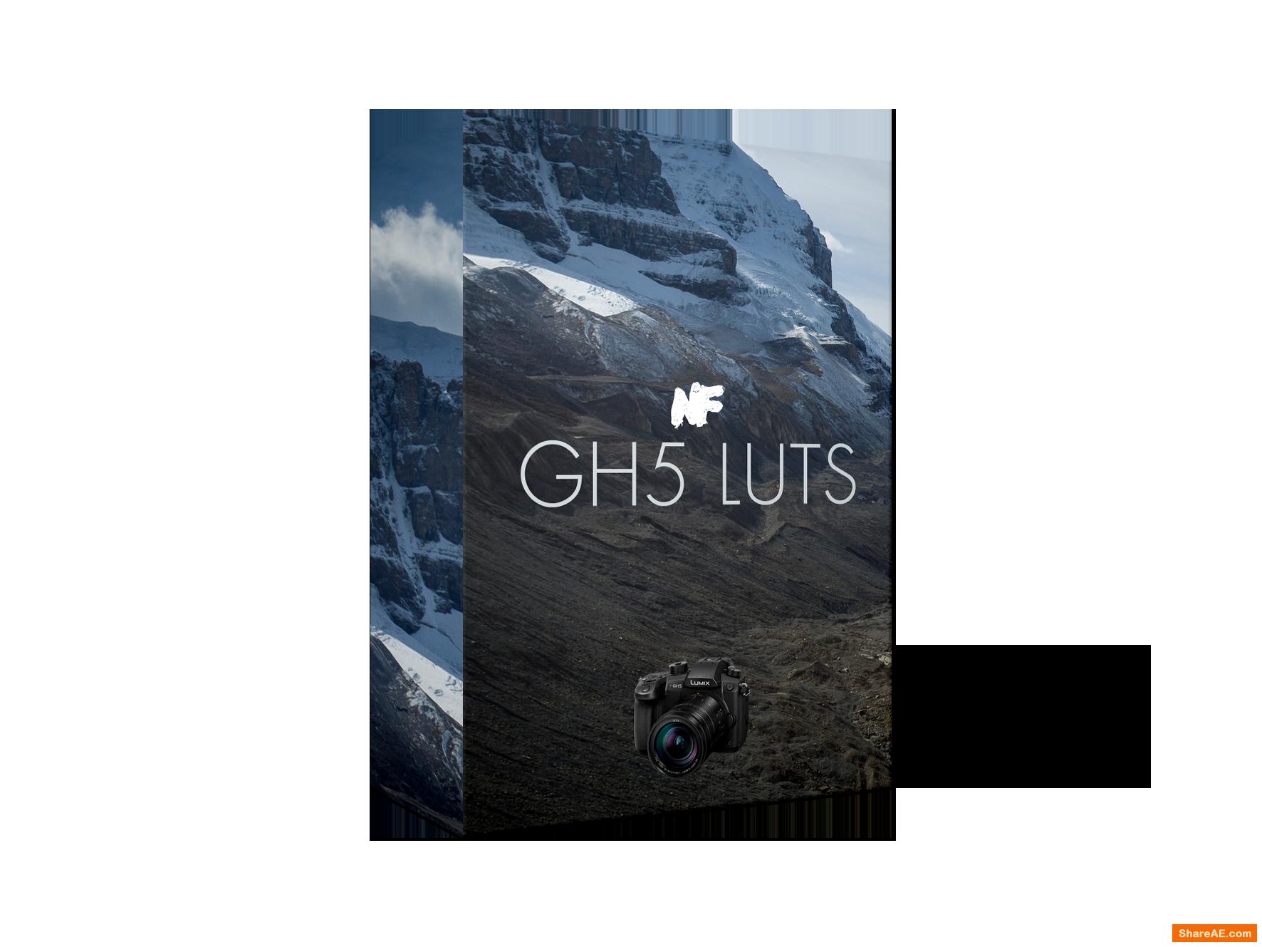 Lumix GH5 LUTs | Neumann Films