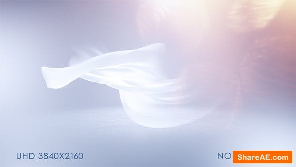 Videohive Soft Clean Logo Reveal