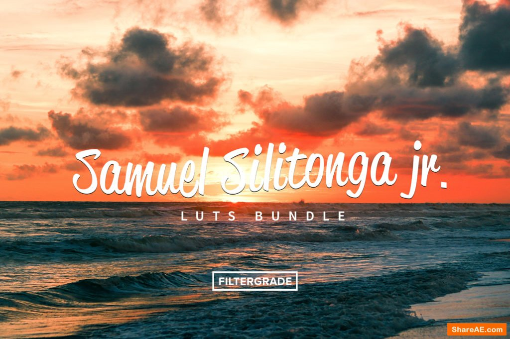 Samuel Silitonga Jr. Video LUTs