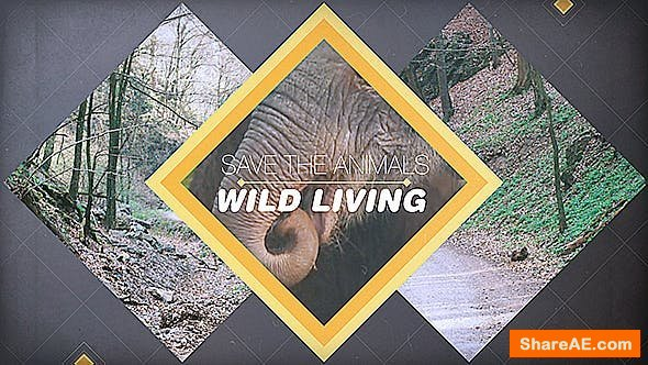 Videohive Wild Living