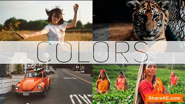 Videohive COLORS - Photo/Video Gallery