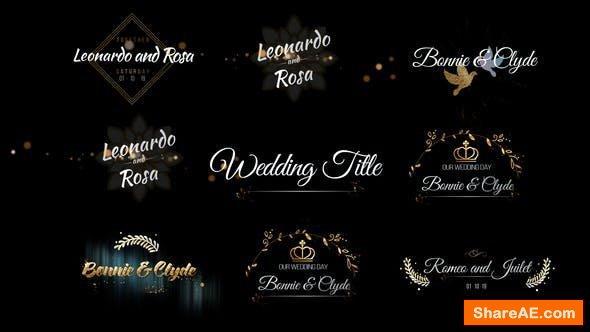 Videohive Six Beautiful Wedding Title