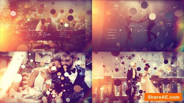 Videohive Brush Particle Wedding Slideshow