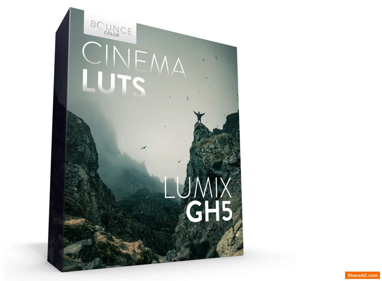 CINEMTIC LUTs V-LOG for Premiere - Bouce Color