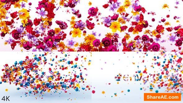 Videohive Flowers Logo Reveal