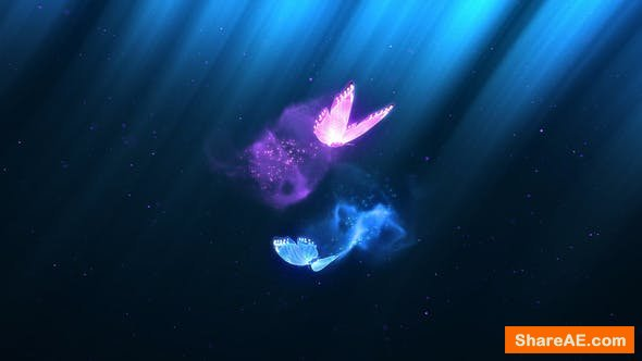 Videohive Colorful Butterfly Trails Logo