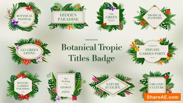 Videohive Tropical Titles Badge