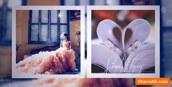 Videohive Wedding Day 21205306