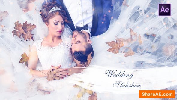 Videohive Wedding Slideshow 25259629