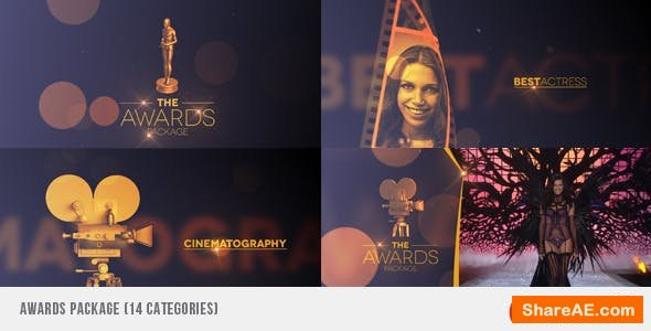 Videohive Awards Package 7053845