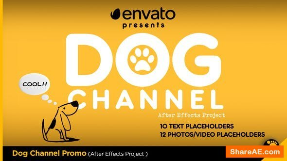 Videohive Dog Channel Broadcast Pack
