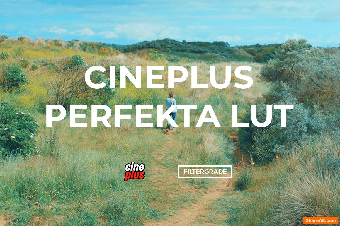 Cineplus Perfekta LUT