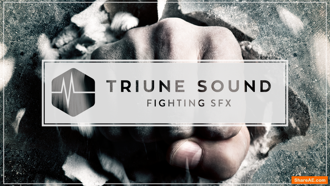 Fighting SFX - Triune Digital
