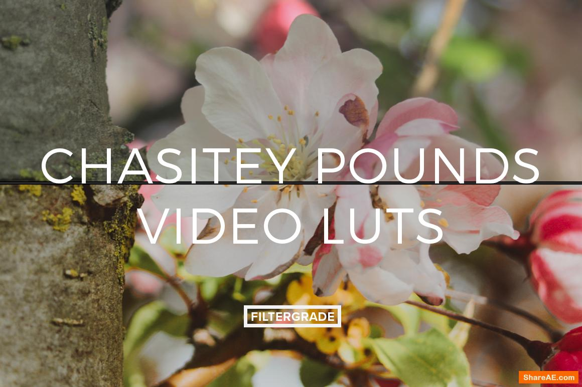 Chasitey Pounds Video LUTs - Filtergrade