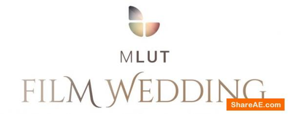 25 Professional LUT Pack - mLUT Film Wedding
